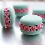 macarons fleurs